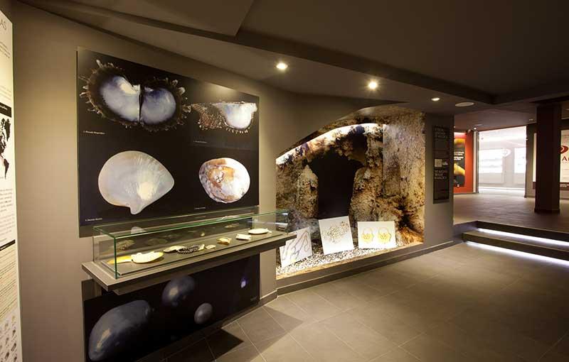 Interior del Mallorca Pearl Museum